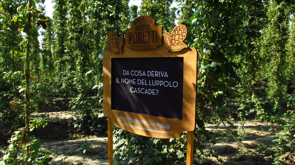 Cartello in legno verniciato Birra Poretti